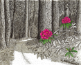 Forest Song, from original pen & ink by Wayne Bricco, Acrewood Art